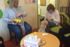 Pet Therapy 19