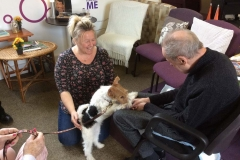 Pet Therapy 6