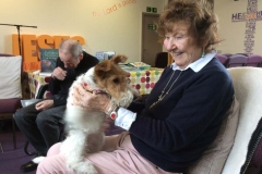 Pet Therapy 8